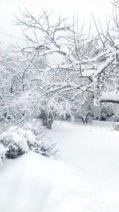 Снегопад в Подмосковье