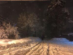 Прошёл февральский снегопад