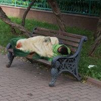 Фото - спящий на скамейке обездоленный