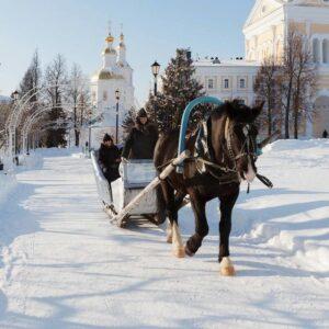 Лошадка мохноногая, запряженная в сани, - фото для записи в блоге Анатолия Сёмушкина
